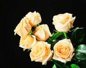 Bukett med vackra rosor — Stockfoto
