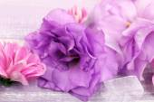 Beautiful chrysanthemum and artificial eustoma flowers on purple wooden background — Stock Photo