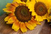 Beautiful sunflowers on wooden background — Stock Photo