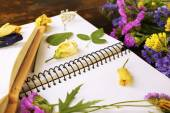 Composition with flowers and dry up plants on notebooks on table close up — ストック写真