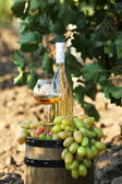 Goblet and bottle of wine with grape on wooden barrel on grape plantation background — Stock Photo