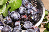 Ripe sweet plums in metal colander, on wooden table — Stock Photo