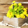 Yellow and green flowers in basket on wooden background — Stock Photo #52845931