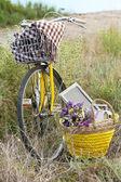 Bicicletta nel prato durante il tramonto — Foto Stock