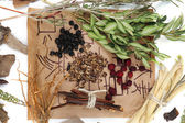 Traditional chinese herbal medicine ingredients with not real hieroglyphs, close-up — Stock Photo