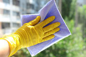 Cleaning windows with special rag  — Stockfoto