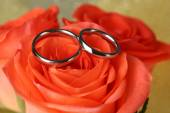 Wedding rings on wedding bouquet, close-up, on bright background — Stock Photo