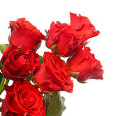 Kytici krásných růží izolovaných na bílém — Stock fotografie