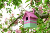 Birdhouse in garden outdoors — ストック写真