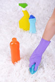 Cleaning carpet with brush — Stock Photo