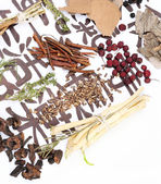 Traditional chinese herbal medicine ingredients — Stock Photo