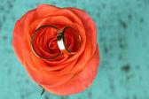 在婚礼的花束上的结婚戒指 — 图库照片
