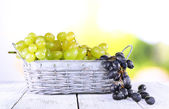 Bunches of ripe grape — Foto de Stock