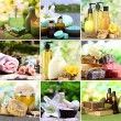Spa remedies collage — Stock Photo #53431501