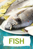 Two fish dorado — Stock Photo