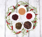 Spice with herbs and chilly pepper — Stock Photo