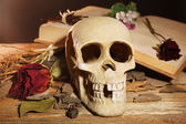 Human skull with dried rose — Stock Photo