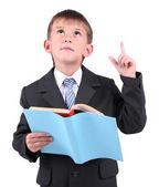 Little nice schoolboy — Stock Photo