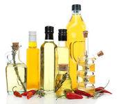 不同种类的食用油 — 图库照片