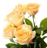 Ramo de rosas hermosas aislado en blanco — Foto de Stock