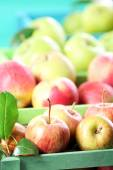 Juicy apples, close-up — Stock Photo