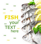Fresh fishes with lemon and parsley isolated on white — Stock Photo