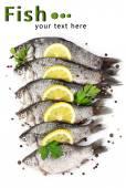 Pescados frescos con limón, perejil y especias aislado en blanco — Foto de Stock