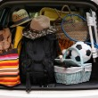 Suitcases in trunk of car — Stock Photo #53951475