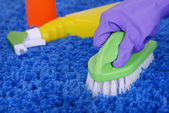 Cleaning carpet — Stock Photo