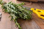 Green Rosemary on table — Stock Photo