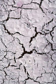 Cracks texture — Stock Photo