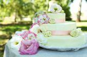 Beautiful wedding cake — Stock Photo