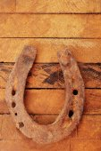 Old horse shoe — Stock Photo