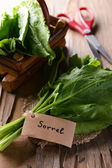 Sorrel on table close-up — Stock Photo