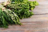 Different fresh herbs — Stock Photo