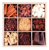 Wooden box with set of coffee and cocoa beans, sugar cubes, dark chocolate, cinnamon and anise, isolated on white — Stock Photo