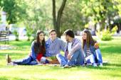 Happy friends on picnic in park — Stock Photo