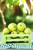 Juicy apples — Stock Photo