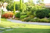 Beautiful landscaping at park — Stock Photo