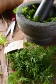 Dill on table close-up — Stock Photo