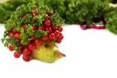 Healthy eating. Hedgehog made of vegetables and fruits, close up — Stock Photo