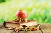 Apple with book and dry leaves — Stockfoto