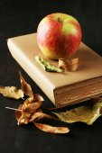 Apple with books and dry leaves — Stockfoto