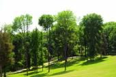 Beautiful park — Стоковое фото
