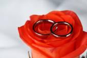 Wedding rings on wedding bouquet — Stock Photo