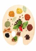Painting palette with various spices — Stockfoto