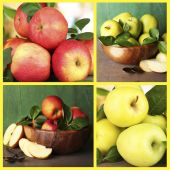 Collage of apples — Stock Photo