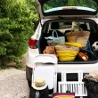 Suitcases and bags in trunk of car ready to depart for holidays — Stock Photo #55018495