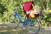 Bicycle and open suitcase on it in shadow in park — Stock Photo