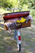 Bicycle and half open suitcase on it in shadow in park — Stock Photo